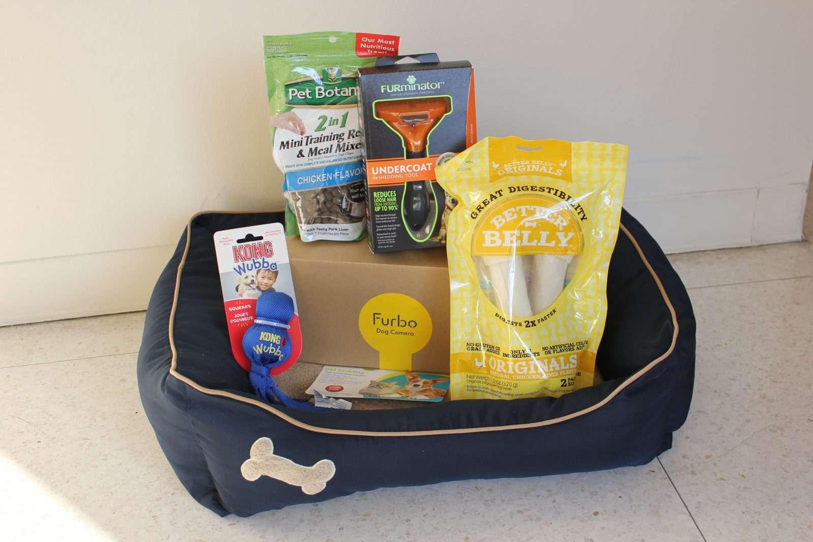 Dog Basket Raffle Flyer IMAS and PVAS