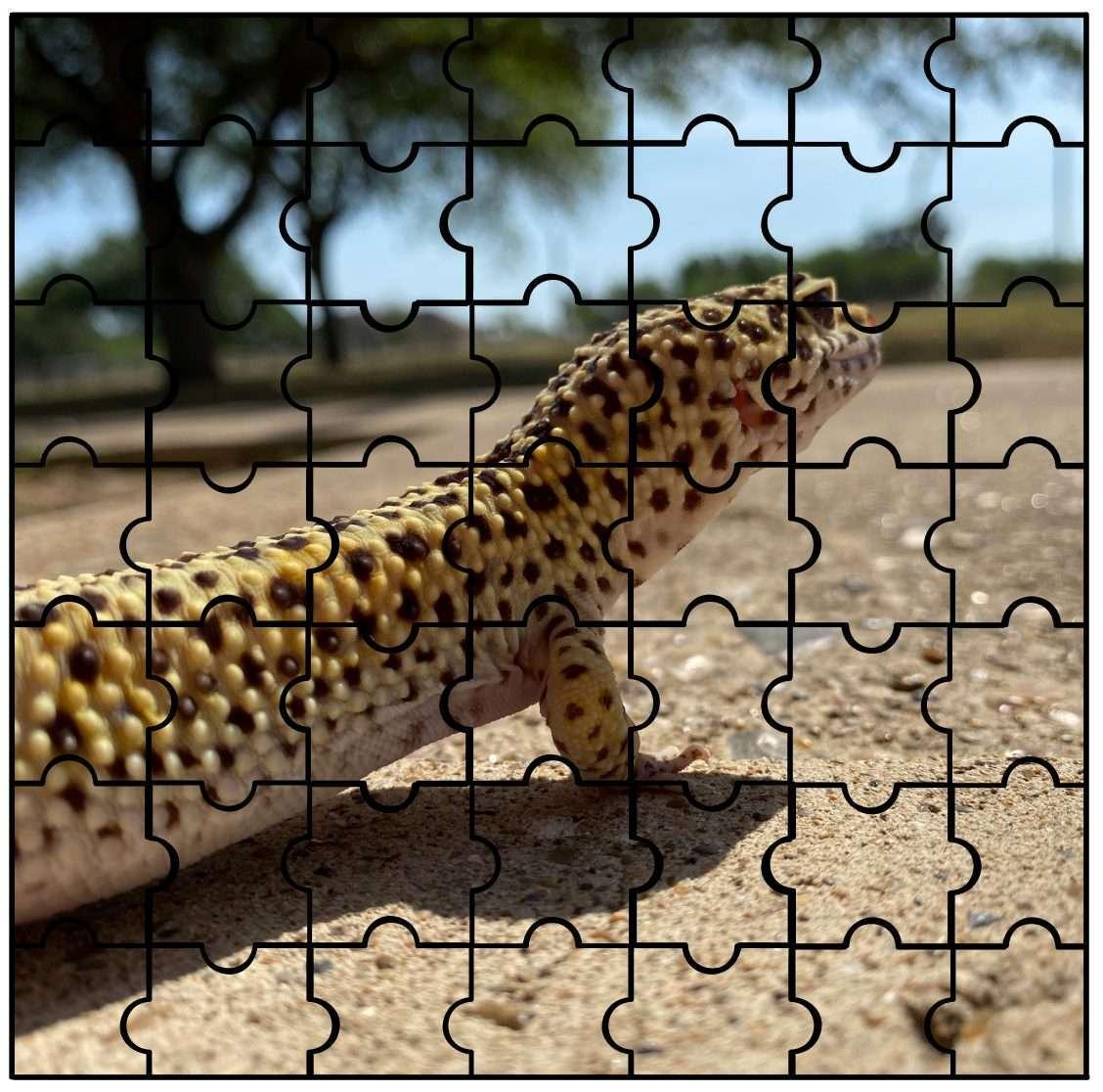 IMAS Animal Puzzle Gobi