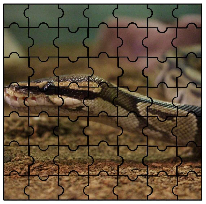 IMAS Animal Puzzle Snake
